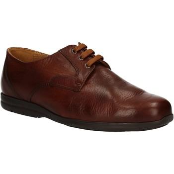 Cipők Férfi Oxford cipők Fontana 5685-VI Barna