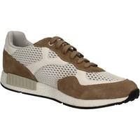 Cipők Férfi Rövid szárú edzőcipők Keys 3065 Barna