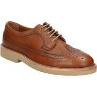 Cipők Férfi Oxford cipők Maritan G 111914 Barna