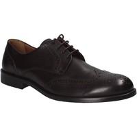Cipők Férfi Oxford cipők Maritan G 111240 Barna