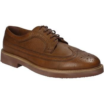 Cipők Férfi Oxford cipők Maritan G 111555 Barna