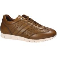 Cipők Férfi Rövid szárú edzőcipők Maritan G 140557 Sárga