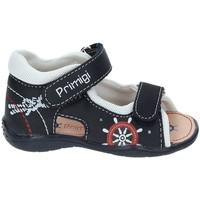 Cipők Lány Sportszandálok Primigi 7006 Kék