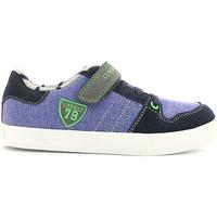Cipők Gyerek Rövid szárú edzőcipők Lumberjack SB02205 006 O06 Ibolya