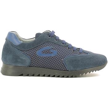 Cipők Gyerek Rövid szárú edzőcipők Alberto Guardiani GK22343G Kék