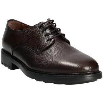 Cipők Férfi Oxford cipők Maritan G 111333 Barna