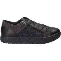 Cipők Férfi Rövid szárú edzőcipők IgI&CO 2131200 Fekete