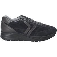 Cipők Férfi Rövid szárú edzőcipők IgI&CO 2137711 Kék