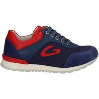Cipők Gyerek Rövid szárú edzőcipők Alberto Guardiani GK23301 Kék