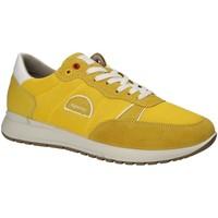Cipők Férfi Rövid szárú edzőcipők IgI&CO 1120333 Sárga