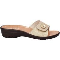 Cipők Női Papucsok Susimoda 1651-01 Bézs