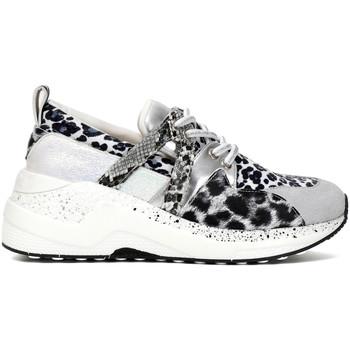Cipők Női Rövid szárú edzőcipők Café Noir DA934 Fehér