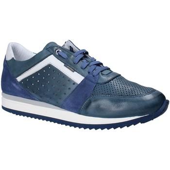 Cipők Férfi Rövid szárú edzőcipők Exton 558 Kék