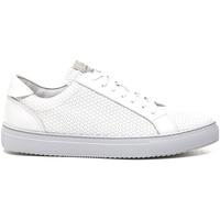 Cipők Férfi Rövid szárú edzőcipők Stonefly 211289 Fehér
