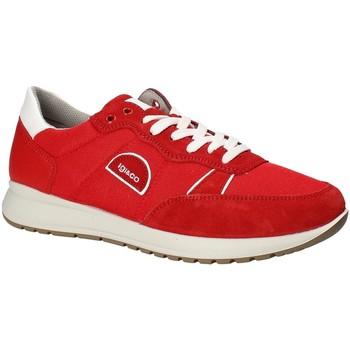 Cipők Férfi Rövid szárú edzőcipők IgI&CO 1120344 Piros