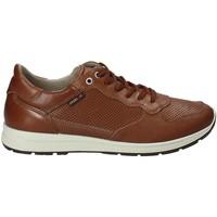 Cipők Férfi Rövid szárú edzőcipők Enval 1211422 Barna