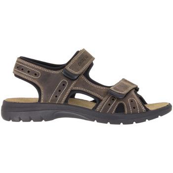 Cipők Férfi Sportszandálok Enval 1213922 Bézs