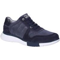 Cipők Férfi Rövid szárú edzőcipők Stonefly 110701 Kék