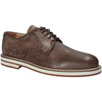 Cipők Férfi Oxford cipők Exton 672 Barna