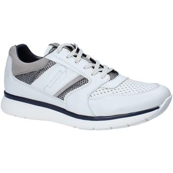 Cipők Férfi Rövid szárú edzőcipők Impronte IM181021 Fehér