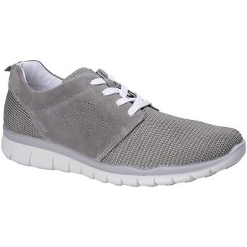 Cipők Férfi Rövid szárú edzőcipők IgI&CO 1116 Szürke