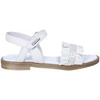 Cipők Lány Szandálok / Saruk Balducci 10233A Fehér