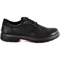 Cipők Férfi Oxford cipők Enval 2223600 Fekete
