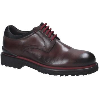 Cipők Férfi Oxford cipők Exton 940 Barna