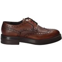 Cipők Férfi Oxford cipők Rogers 751_2 Barna
