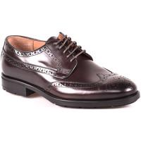 Cipők Férfi Oxford cipők Maritan G 112486MG Barna