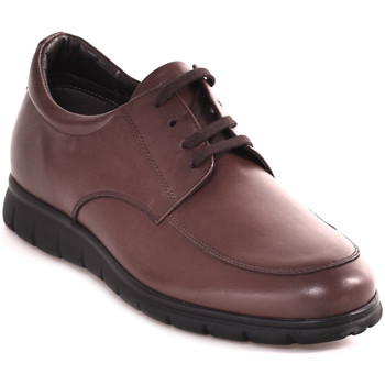 Cipők Férfi Rövid szárú edzőcipők Soldini 20583 P Barna