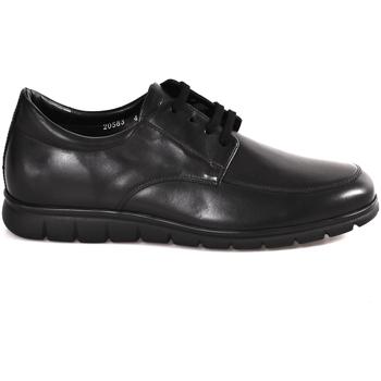 Cipők Férfi Oxford cipők Soldini 20583 P Fekete