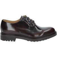 Cipők Férfi Oxford cipők Rogers 122A Barna