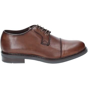 Cipők Férfi Oxford cipők Rogers 2040 Barna