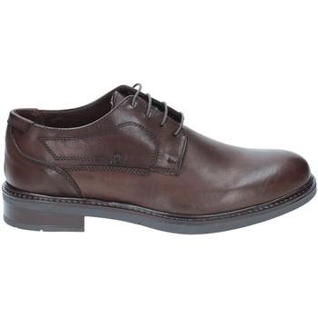Cipők Férfi Oxford cipők Rogers 2027 Barna