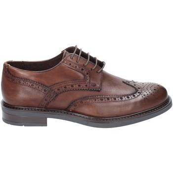 Cipők Férfi Oxford cipők Rogers 3040 Barna