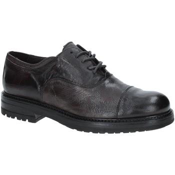 Cipők Férfi Oxford cipők Exton 692 Barna