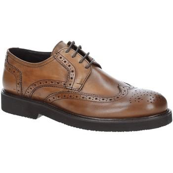Cipők Férfi Oxford cipők Exton 5446 Barna