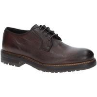 Cipők Férfi Oxford cipők Exton 690 Barna
