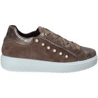 Cipők Női Rövid szárú edzőcipők IgI&CO 2153922 Barna