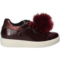 Cipők Női Rövid szárú edzőcipők IgI&CO 2154844 Piros