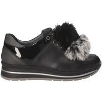 Cipők Női Rövid szárú edzőcipők Grunland SC3944 Fekete