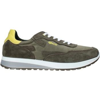 Cipők Férfi Rövid szárú edzőcipők IgI&CO 5127433 Zöld
