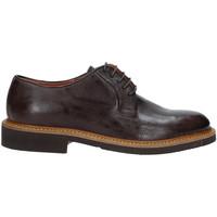 Cipők Férfi Oxford cipők Rogers AM001 Barna