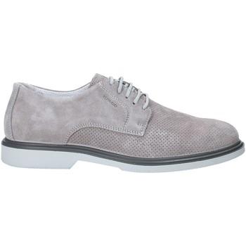 Cipők Férfi Oxford cipők IgI&CO 3105722 Szürke