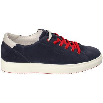 Cipők Férfi Rövid szárú edzőcipők IgI&CO 3132711 Kék