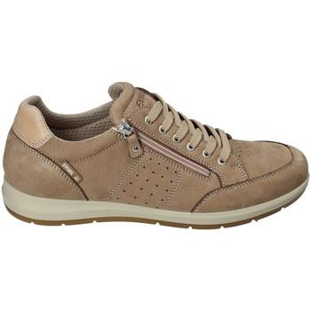 Cipők Férfi Rövid szárú edzőcipők Enval 3233022 Bézs