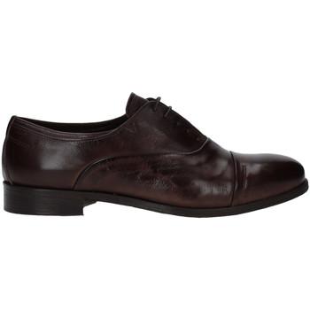 Cipők Férfi Oxford cipők Rogers T0001 Barna