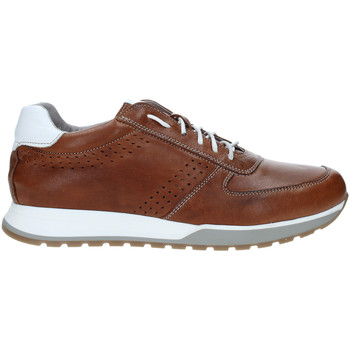 Cipők Férfi Rövid szárú edzőcipők Rogers 5065 Barna