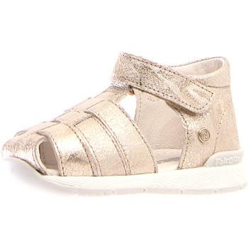 Cipők Lány Szandálok / Saruk Falcotto 1500751-04-0Q06 Mások
